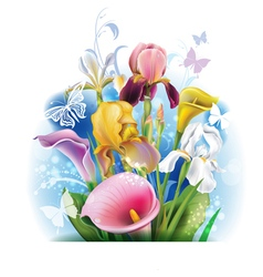 Bouquet of Calla lilies and irises vector image vector image