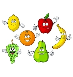 Cartoon tropical and garden fruits characters vector image