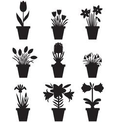 flower pot black vector image vector image