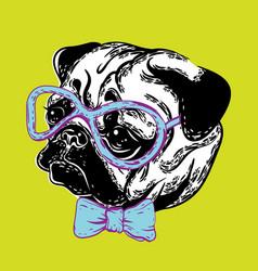 A cute muzzle dog pug dog vector