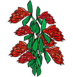Bouquet of red flowers and green leaf vector