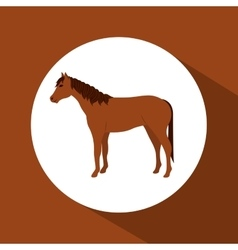Colorful horse animal design vector