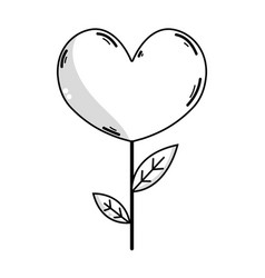 Line beauty heart plant with leaves design vector