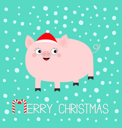 pig piglet hog swine sow animal cute cartoon vector image