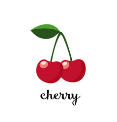 couple of cherries with leaf isolated icon vector image vector image