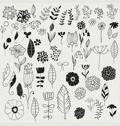 spring floral design elements vector image vector image