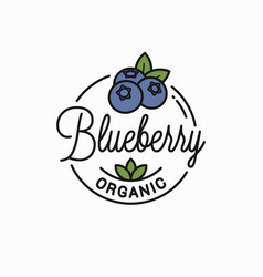 blueberry logo round linear organic blueberry vector image