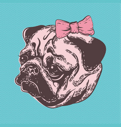 Cute muzzle dog pug breed with vector