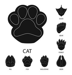 Design feet and fauna symbol set of vector