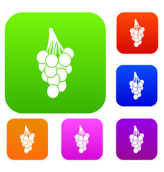 grapes set color collection vector image