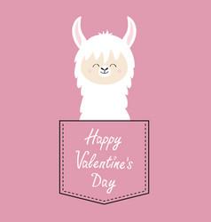 happy valentines day alpaca llama face sitting vector image