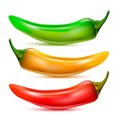 Pepper Icon Set vector