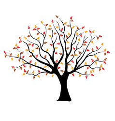 Tree with brown yellow and red leaves vector