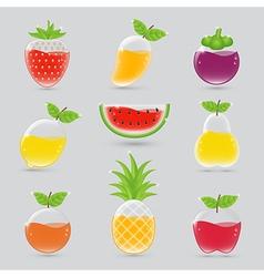 Fruit juice set vector image