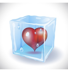 Ice cube with heart vector image