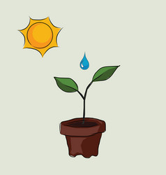 planting process in pots with sun and water drop vector image vector image