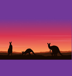 beauty landscape kangaroo silhouette collection vector image