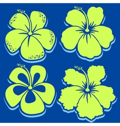 Flower Hibiscus Collection vector