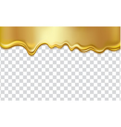 golden flowing liquid isolated on transparent vector image