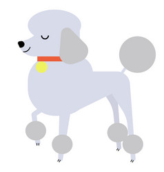 Poodle flat vector