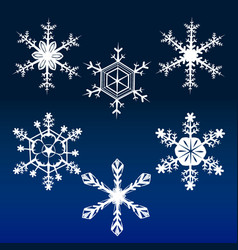 snowflakes 1 vector image