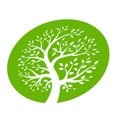 tree circle icon green ellipse logo vector image