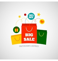 Woman shopping sale icon flat vector image