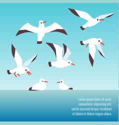 atlantic seabirds flying background design vector image