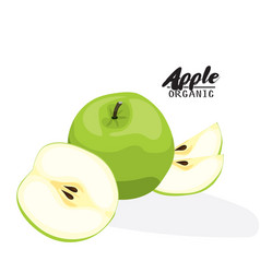 cartoon apple ripe green fruit vegetarian vector image vector image