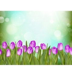 Beautiful tulips EPS 10 vector image vector image