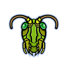 Grasshopper head mascot vector