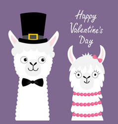 happy valentines day llama alpaca animal set love vector image