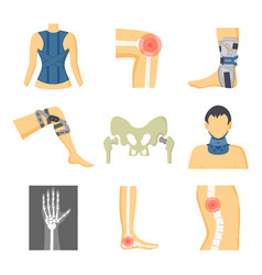 Orthopedics fixing tools and pain in bones image vector
