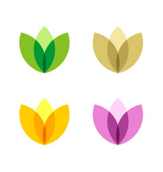 set colorful ornamental flower logo templat vector image