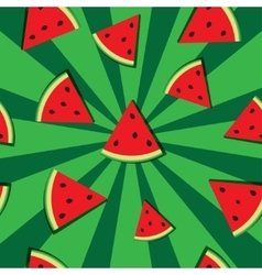 slices of watermelon vector image