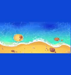 summer sea beach sandy ocean shore top view vector image