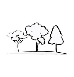 trees plant natural forest image sketch vector image