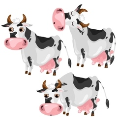 White spotted cow in three poses animals vector