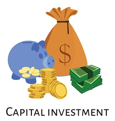 Capital investment vector image