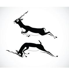 deer 4 vector image