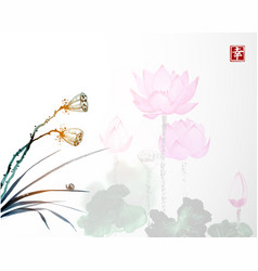 Dry lotus seed heads and lotus flowers on vector
