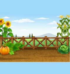 farm background with various plant vector image