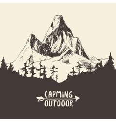 Fir forest mountain drawn vector image