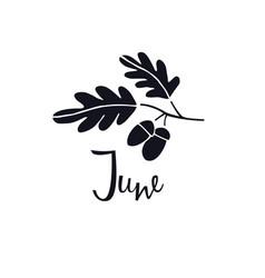 June oak tree celtic symbol hand lettering vector