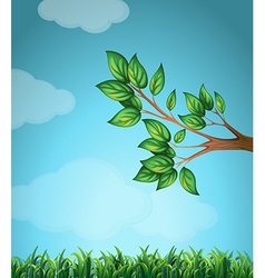 Scene with branch and grass vector
