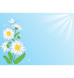 Summer card with flowers and rays vector