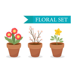 flower pot with different flowers set flat style vector image vector image