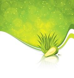 Avocado and Aloe Vera vector image
