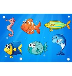 Colorful sea creatures vector