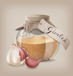 ground dry garlic in a glass jar with whole garlic vector image